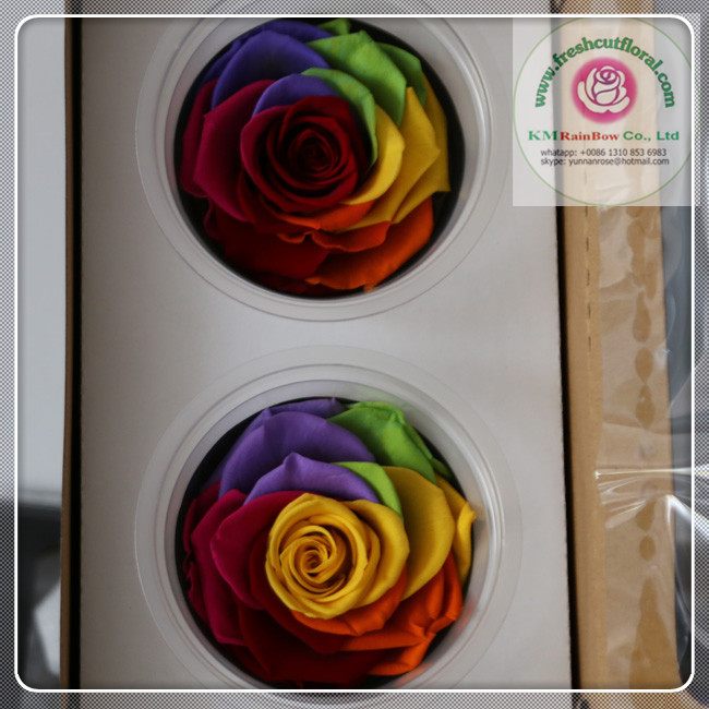 size 7-8 cm red+pink+yellow+green+blue+purple+orange natural preserved rose heads 2 pieces/box from Yunnan