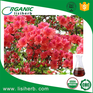 Wholesale bulk organic daurian rhododendron oil