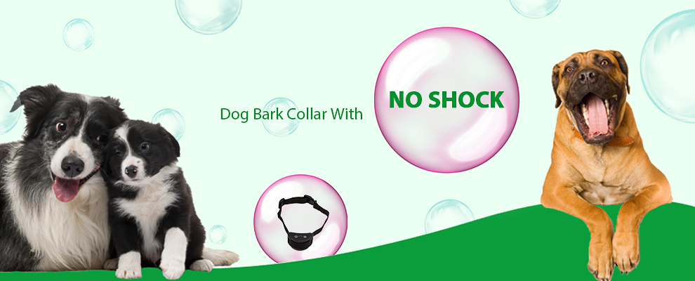 Wellturn Best Waterproof And Rechargeable Dog Shock Collars For Training WT258V Hot Sale In Amazon