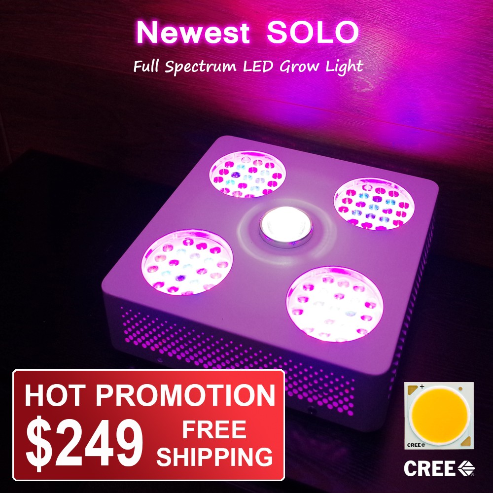 Full Spectrum Solo 300w Led Grow Light With Cxa 2540 Cob