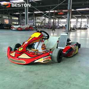 Low price kids racing petrol go karts with 1 or 2 seats