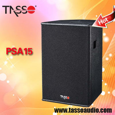 professional loudspeakers active speakers self-powered DSP
