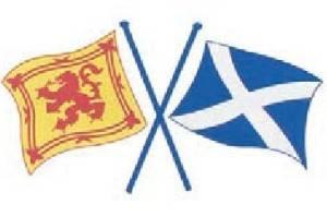 stickyrico1 Scottish Gifts - Scottish Car Sticker - Crossed Scotland Flags - Saltire & Lion Rampant - UK Gifts