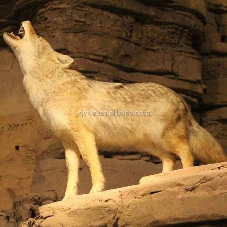 Großhandel Malvorlagen Wolf Kaufen Sie Die Besten Malvorlagen Wolf