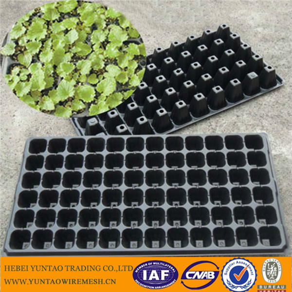 72 cells plastic biodegradable seed starting tray