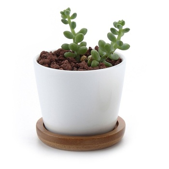 Wholesale ceramic white round simple design plant flower pot with bamboo tray cactus pot