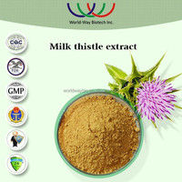 Natural free sample silymarin extract,health food material 80% silymarin&30%silybinin,factory supply milk thistle extract powder