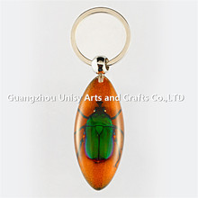 Insect amber key accessories for the artificial amber key chain tourist souvenirs