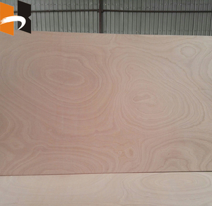 hot sell commercial marine sapele veneer plywood board for furniture