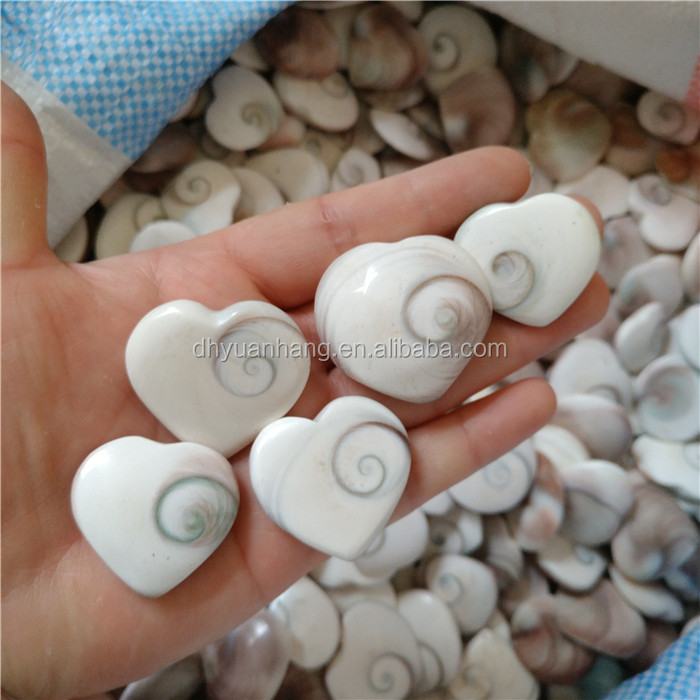 Natural sun conch fossil hearts shapes conch stones for wedding favor