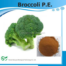 Health Food Supplement Ratio 10:1 Broccoli P.E.