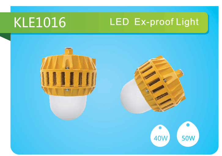 ATEX light IP66 50W explosion proof flood light Ex-Proof Lamp