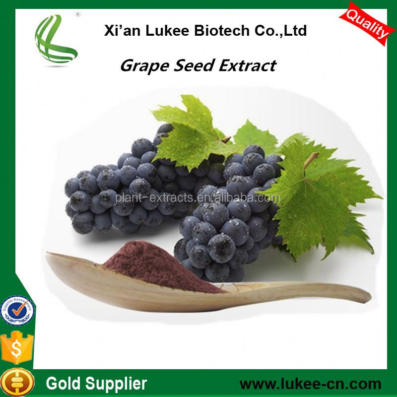 Accobio supply Antioxidant Proanthocyanidins UV 95% Grape Seed Extract