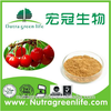 High Quality Free Sample Acerola Cherry Extract Juice Powder