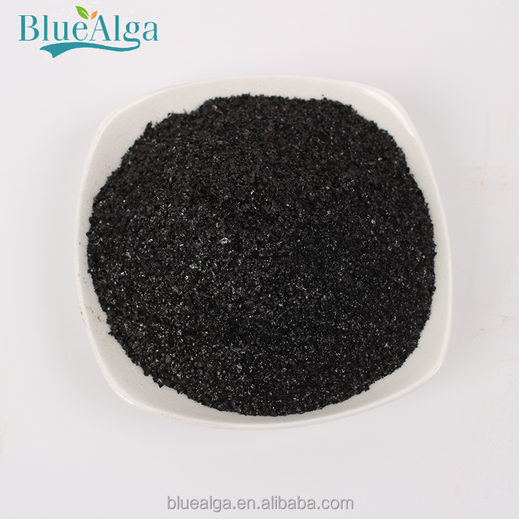 China Professional Manufacturer Supply Organic Seaweed Fertilizer For  Vegetables Plant - Buy Organic Seaweed Fertilizer,China Seaweed