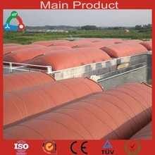Economic Customized Anaerobic Digester Biogas Products Price