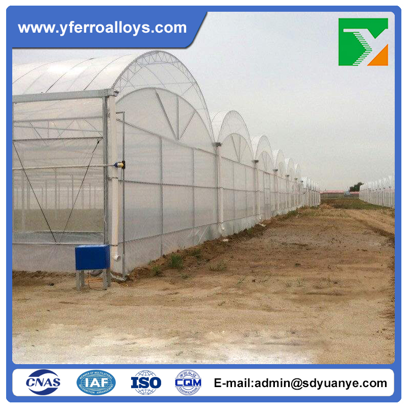 Tunnel Plastic Arch Greenhouse/Vegetable Production Greenhouses China For Commercial