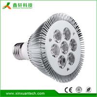 CE RoHS led spotlight par30 45/60 Degree garden led pin spot light