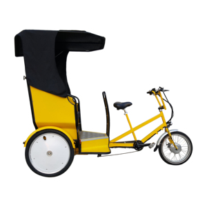 China Export Factory Price 6 Speeds Urban Freight Delivery Electric Tricycle Pedicab