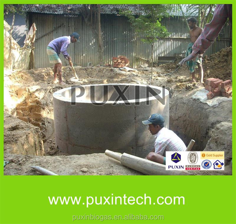 Biogas Plant/small Biogas Digester/Biogas Product for home waste