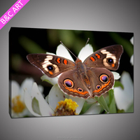 chinese butterfly wall hanging glass painting on canvas modern