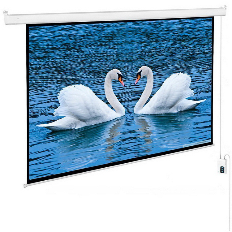 Alibaba china new coming motorized pop up projection screen