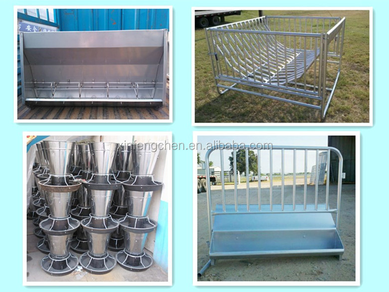 Pig feeder equipment for trough