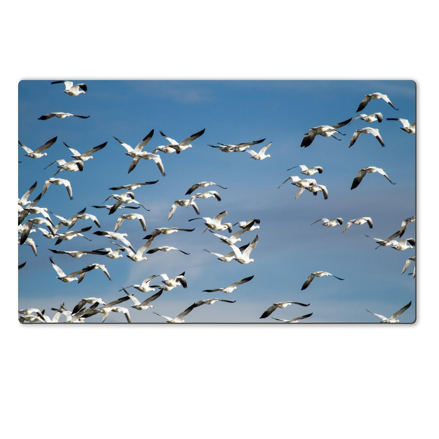 Luxlady Large Table Mat Natural Rubber Material Image 24748367312