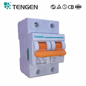 TENGEN factory supply TGB3H-125C 1pole circuit breaker B type C type safety electrical motorized mcb mini Circuit Breaker