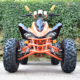 600CC QUAD ATV 4x4 with V-Twin Cylinder