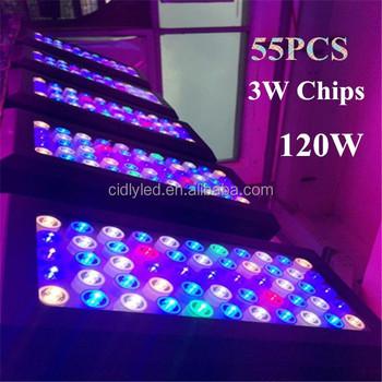 165w Led Aquarium Light,Hot Sale Full Spectrum Led Aquarium Light ...