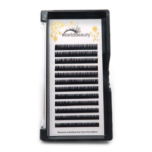 Eyelash Extensions In Korea Wholesale Lashes, Suppliers