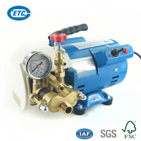 China Factory Supply Hot Sale 100V 60Hz Pressure Washer Pump