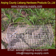 Finden Sie Hohe Qualität Tier Snare Hersteller und Tier Snare auf ...