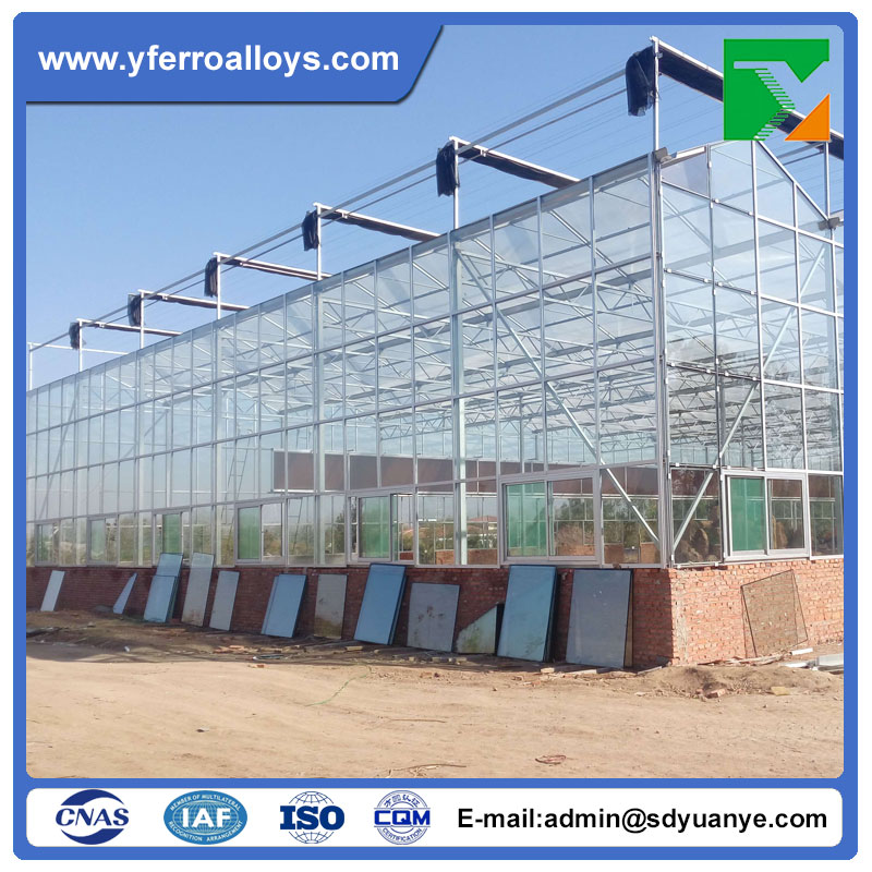 Venlo Type Flower Glass Cover Metal Frame Greenhouse Used