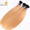 Malaysian straight hair bundles new colored best price 1b 27 ombre color hair