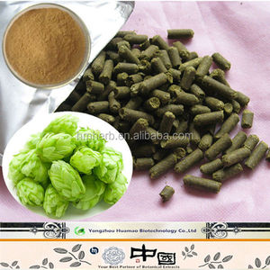Hops Flower Extract for Beer Brewing//Humulus Lupulus Extract