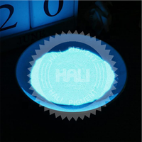 Fluorescent Bright Glow in the Dark Powder Paint Luminous Pigment Graffiti Photoluminescent Dust Coating DIY for Nail Body Paint