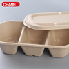Eco-friendly Disposable Biodegradable Sugarcane pulp container Bagasse Tray Container