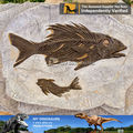 Animal replica wall decoration from factory of mini dinosaur fossil replicas