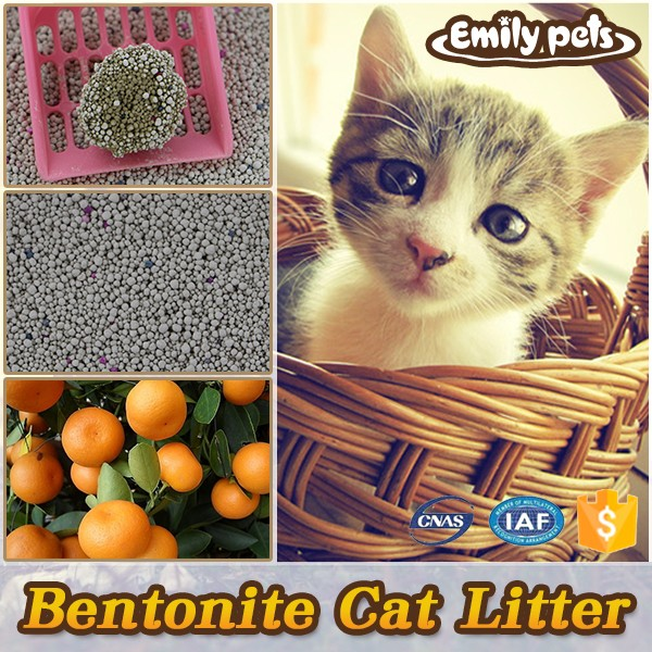New cat product pet/cat/dog litter cleaning with flavor