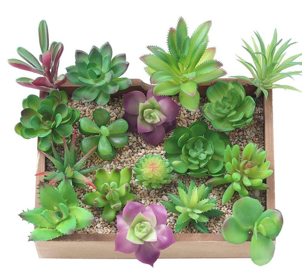 Antuble Mixed Artificial Succulent Plants Fake Succulents for Home Gardern Diy Decoration, (12 Different PCS, Random,Unpotted)