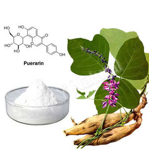 Pure kudzu root extract 40% puerarin