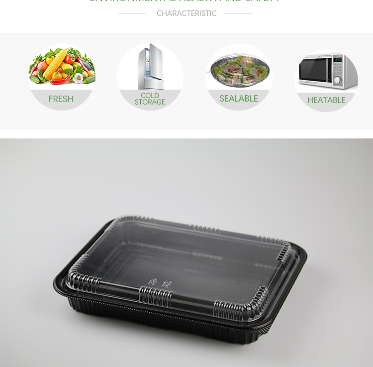 Easy Green PP Disposable Microwavable Bento Box