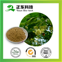 Hot selling plant extract powder 10:1 Linden Flower Extract
