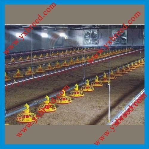 Factory Price Broiler Floor Growing System - Buy Broiler