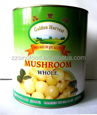 Canned Food Market Price Mushroom in Salt Hot Selling