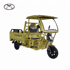 2018 Best sale popular cargo three wheel electric tricycle cheap cargo tricycles agriculture mini cargo vehicle on sale