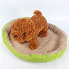 New Inventions 2016 Colorful Pet Beds Plastic Dog Beds