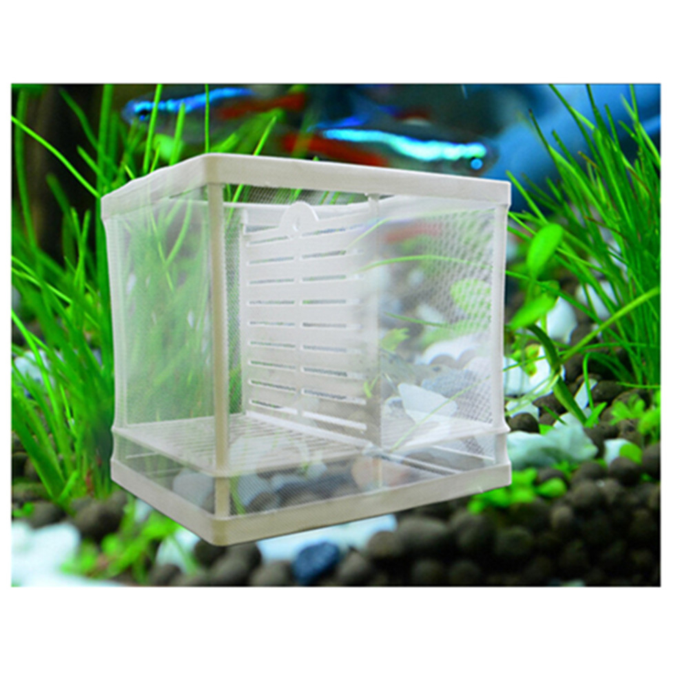 Aquarium Fish Breeding Fry Hatchery Nursery Box Double Deck ...